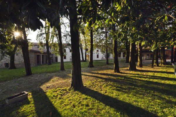 Complesso Villa Savardo Via Riva 20 – 36042 Breganze (VI)